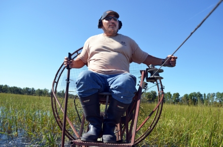 Larry Gardiner, 46, drives an air boat while harvesting wild rice on the Canoe River. Gardiner, who's harvested wild rice on and off for 10 years, has to drive at 9 km/h in order to not damage the plants. He said driving the boat is pretty much the same as driving a snowmobile.
