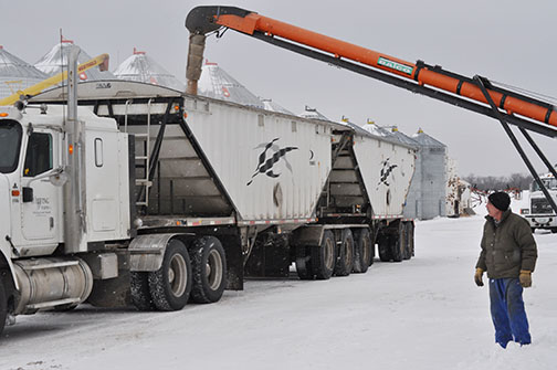 Emil Klassen looks on as his truck fills with grain from Wilfing Farms east of Meadow Lake Feb. 18. Klassen later transported the load to a North Battleford grain terminal.